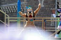 [イン日記]燦水!サマービート見てきたよ - Ruff!Ruff!! -Pluto☆Love-