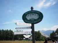 北海道 ラベンダー旅行 - mechT
