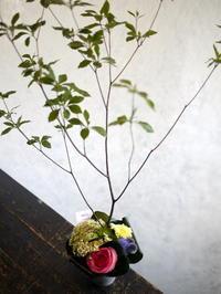南2西1のイタリアンレストランの2周年に。2017/07/15。 - 札幌 花屋 meLL flowers