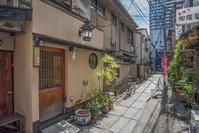 記憶の残像 2017年 花の東京 -23 東京都新宿区 荒木町 - ある日ある時 拡大版
