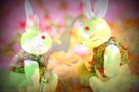 ウサギさん撮りなおししたツモリガ、、、 - 想い出
