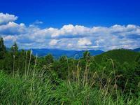 潮見峠のひるね王子で・Hirune Oji  in Shiomi pass - KIGA熊野・高野英語ガイドの会