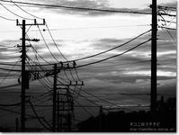 【ゆ】夕焼け電線:ゆうやけでんせん - ネコニ☆マタタビ