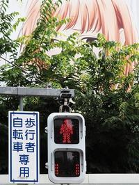原宿・渋谷(2) #見られてる - Oh! Photo