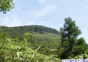 No470鳥取県 ブナの原生林三国山を歩く - みちくさおじさん山を歩く