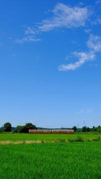 夏、湿気漂う海士有木のストレートにキハ200気動車 小湊鐵道 - My B Side Life season2
