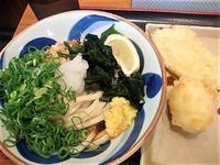 7/10 ぶっかけうどん310円 - ココ岡山