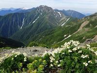 我が原点の山、南アルプス南部~終わりと始まりと - 山旅~ぼくを探しに