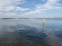 渓流へ浜名湖へ‥ - 鈴木寿のブログ  フライフィッシングな毎日