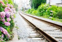 鎌倉散歩◆極楽寺駅〜御霊神社 - PHOTOSMILE アトリエ