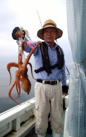 本日、水曜日!! タコの八ちゃん、なぜかやる気出しています(^▽^) - 愛媛・松山・伊予灘・高速遊漁船 pilarⅢ 海人 本日の釣果