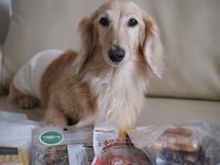 17年7月19日 さくらへの贈り物♪&梅雨明け! - 旅行犬 さくら 桃子 あんず 日記