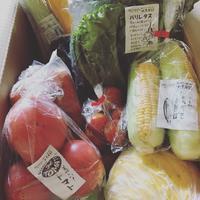 今週の野菜と京都大原から。 - やまごや