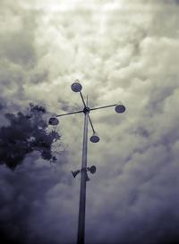 HOLGAらしく - 勿忘草・・時の記録