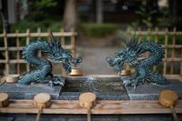 大国魂神社2 - 彩りの軌跡