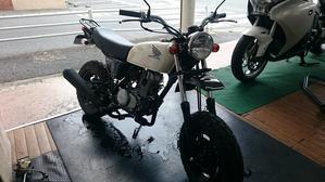 生産終了になっちゃうモデル達 - 4ミニバイクで遊ぶ! 山口店長ブログ