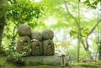 鎌倉散歩◆長谷寺 - PHOTOSMILE アトリエ