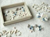 貝殻ピアスと標本箱 - Chi・Chiのてしごと日和