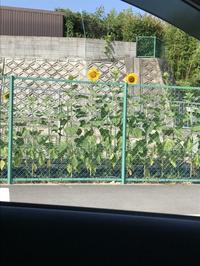 7月20日(木) - オートクロスブログ