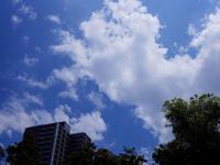 今日の気温36℃ - 音舞来歩(IN MY LIFE)