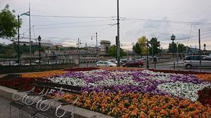 ブダペスト中央市場~オペラハウス前~インターコンチネンタル周辺 -
