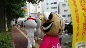 3人? 3匹?…『一石二猫』でお出かけ♪ - 対馬市福岡事務所レポート