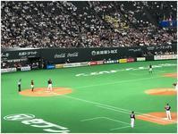 野球観戦 - デジカメ散歩北海道