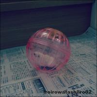 ● ランナーボールを買いました。 - 色々ワタシイロ02