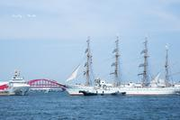 Port of Kobe ♪ - Lovely Poodle