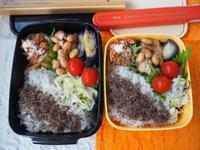 兄ちゃんとお嬢のサラ弁☆鶏手羽元と大豆のさっぱり煮弁当 - きくまんま