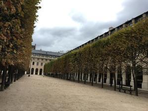 Paris  五日目  パレロワイヤルとパッサージュ - やさしい光のなかで