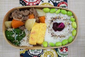 肉じゃがのお弁当(^^) - オヤコベントウ & コトリのおはなし