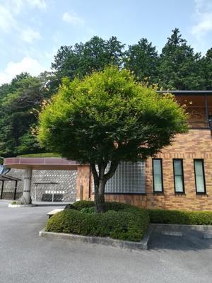 石松苑/SEKISHOUEN