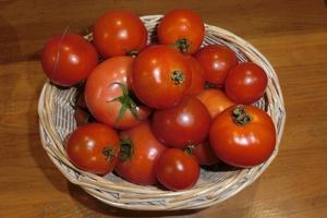 最盛期、夏野菜 -
