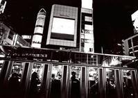 プレミアムフライデー - 写真家藤居正明の東京漫歩景