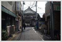 千住散歩 -647 - Camellia-shige Gallery 2