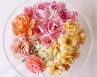 夏のバラ - 元木はるみのバラとハーブのある暮らし・Salon de Roses