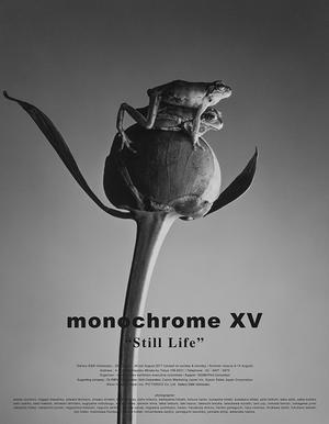 "monochrome XV ""Still Life"" 第3週目はじまりました。 - 写真家 永嶋勝美の「散歩の途中で . . . !」(DGSM Print)"