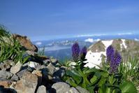 白馬岳を歩いて (2017/07/18-21) - まるさん徒歩PHOTO 3:SLやまぐち号・山風景など…。 (2015~)