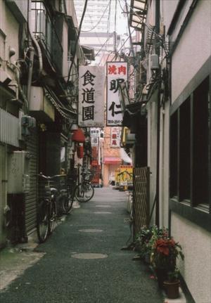 上野~2017年花の頃 4 - 散歩日和