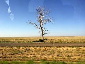 ほぼリアルタイム遠征レポ~アーカンソー州横断未遂 - アメリカ南部ど田舎奮闘記