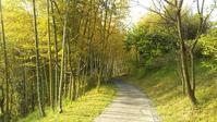 2017年GWの旅 四国・中国・九州縦断(7)-トベ・オーベルジュ・リゾート 自然編 - Pockieのホテル宿フェチお気楽日記 II