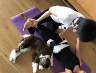 Pilates & Sup / 身体に良い一日 ピラティス&海遊び - toy's