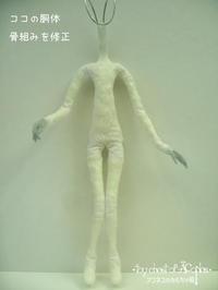 ココの身体が改善されました - アコネスのおもちゃ箱 ぽつぽつ更新ブログ