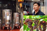 神戸で「アーバンワイナリーをはじめよう!」 - WineShop FUJIMARU