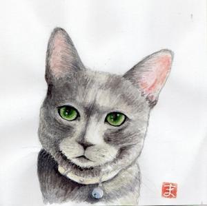 シェンランちゃんの似顔絵 - まゆみのお絵描き絵手紙