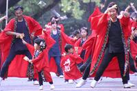 よさこい踊り-3(小さな踊り子たち) - 子猫の迷い道Ⅱ