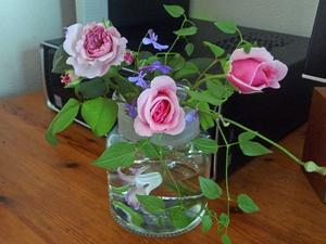 朝の花と詩 -