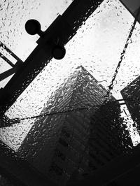 突然の雨 - 心のカメラ / more tomorrow than today ...