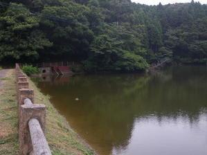 「夜の「夜の生きものたち」追加話 - 千葉県いすみ環境と文化のさとセンター